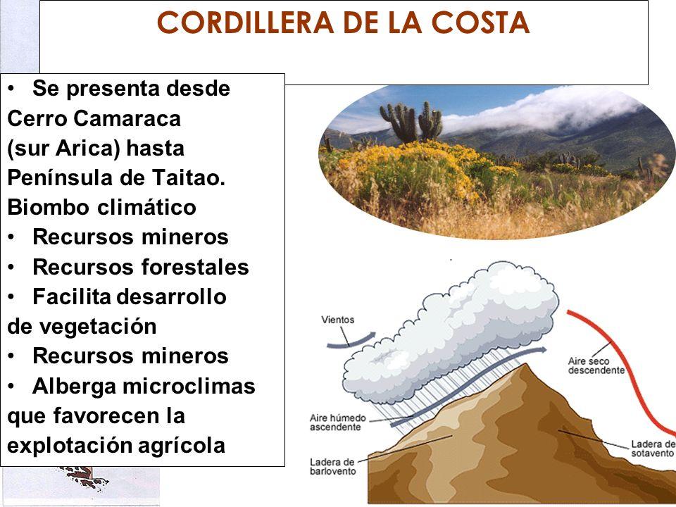 CORDILLERA DE LA COSTA Se presenta desde Cerro Camaraca (sur Arica) hasta Península de Taitao. Biombo climático Recursos mineros Recursos forestales F