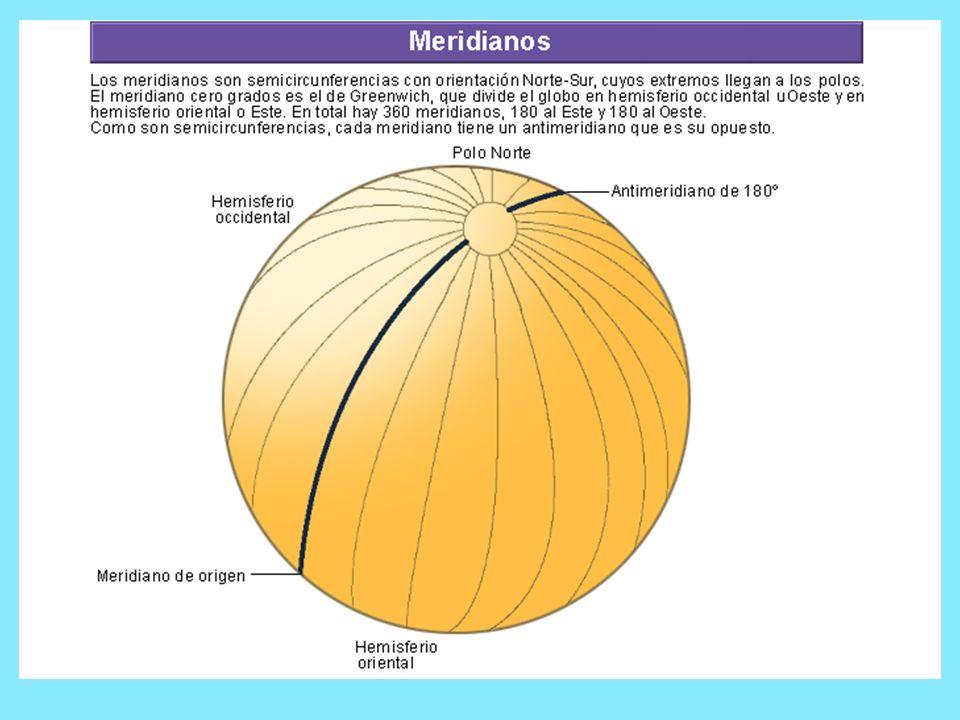 Los meridianos: Son semicírculos máximos, cuyos extremos coinciden con los polos norte y sur.