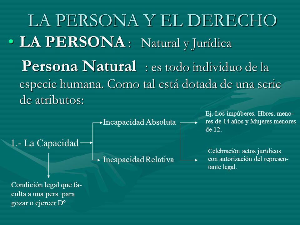 LA PERSONA Y EL DERECHO LA PERSONA : Natural y JurídicaLA PERSONA : Natural y Jurídica Persona Natural : es todo individuo de la especie humana. Como
