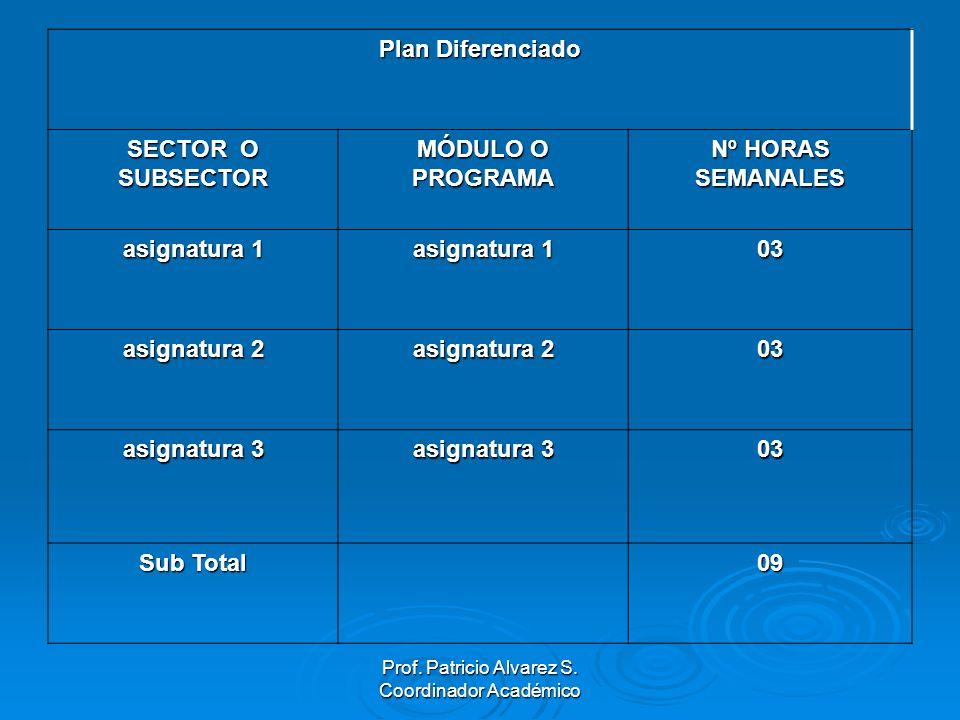 Plan Diferenciado SECTOR O SUBSECTOR MÓDULO O PROGRAMA Nº HORAS SEMANALES asignatura 1 03 asignatura 2 03 asignatura 3 03 Sub Total 09