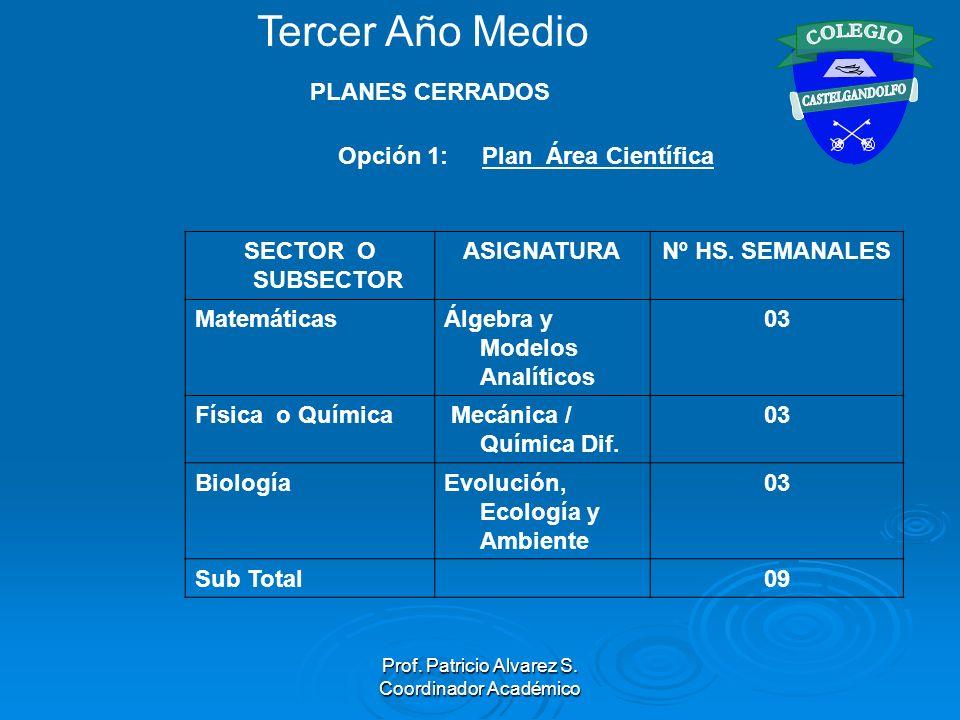 Prof. Patricio Alvarez S. Coordinador Académico Opción 1: Plan Área Científica SECTOR O SUBSECTOR ASIGNATURANº HS. SEMANALES MatemáticasÁlgebra y Mode