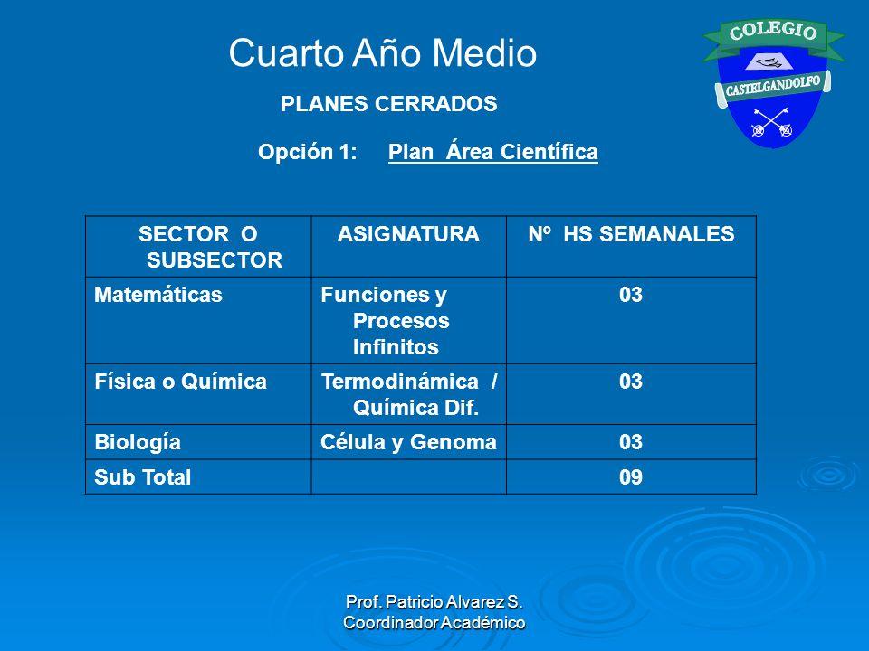 Prof. Patricio Alvarez S. Coordinador Académico Opción 1: Plan Área Científica SECTOR O SUBSECTOR ASIGNATURANº HS SEMANALES MatemáticasFunciones y Pro