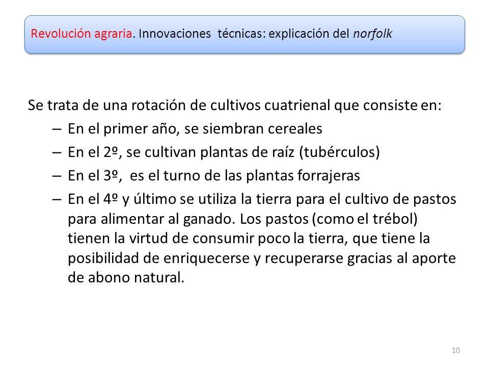 Revolución agraria. Innovaciones técnicas: explicación del norfolk Se trata de una rotación de cultivos cuatrienal que consiste en: – En el primer año