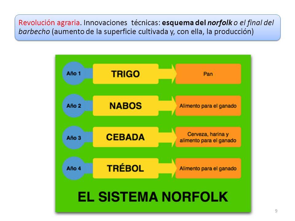 9 Revolución agraria. Innovaciones técnicas: esquema del norfolk o el final del barbecho (aumento de la superficie cultivada y, con ella, la producció