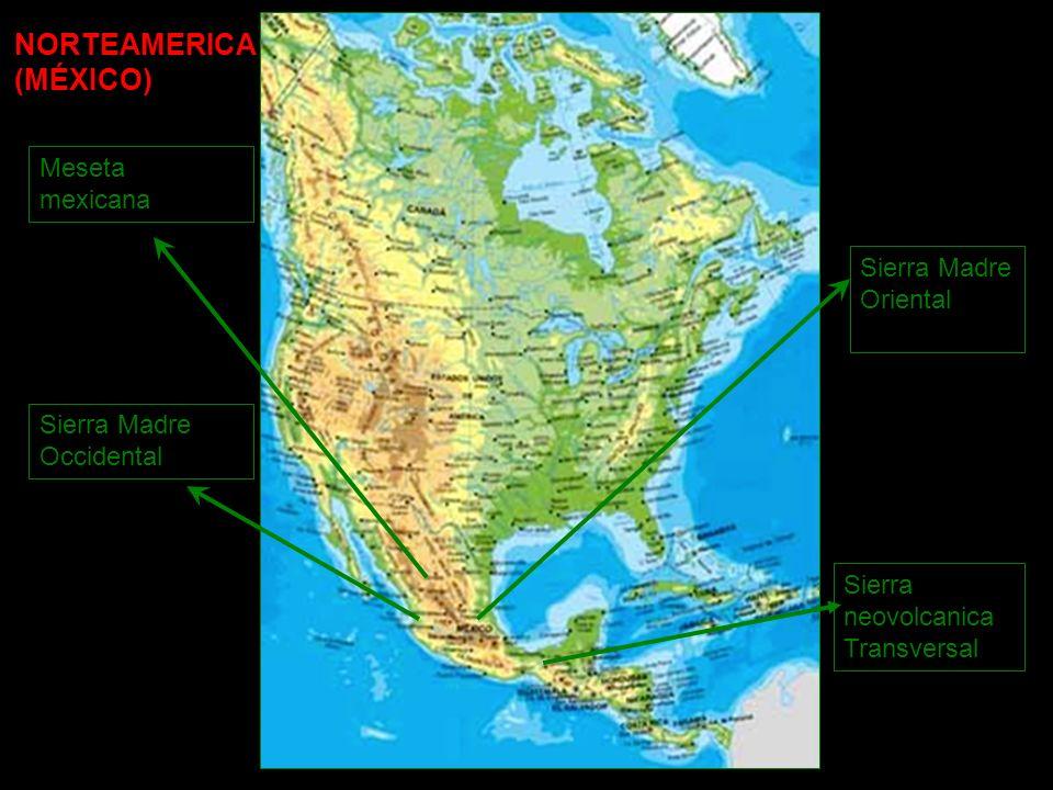Meseta mexicana Sierra Madre Occidental Sierra Madre Oriental Sierra neovolcanica Transversal NORTEAMERICA (MÉXICO)