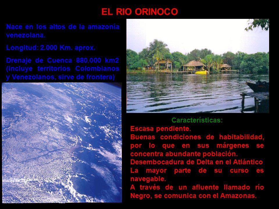 EL RIO ORINOCO Nace en los altos de la amazonía venezolana. Longitud: 2.000 Km. aprox. Drenaje de Cuenca 880.000 km2 (incluye territorios Colombianos