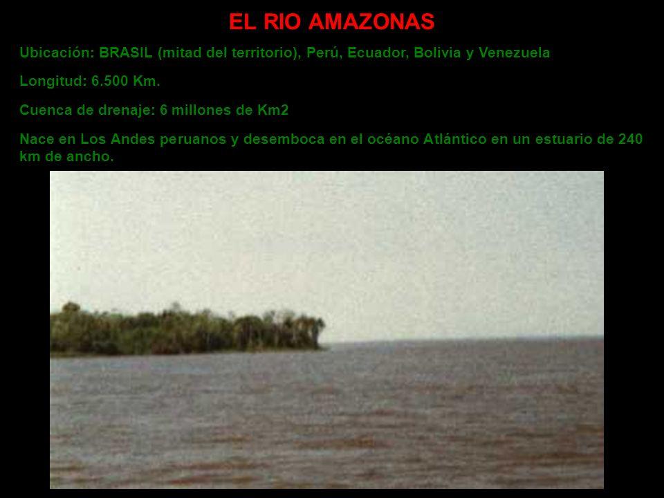 EL RIO AMAZONAS Ubicación: BRASIL (mitad del territorio), Perú, Ecuador, Bolivia y Venezuela Longitud: 6.500 Km. Cuenca de drenaje: 6 millones de Km2