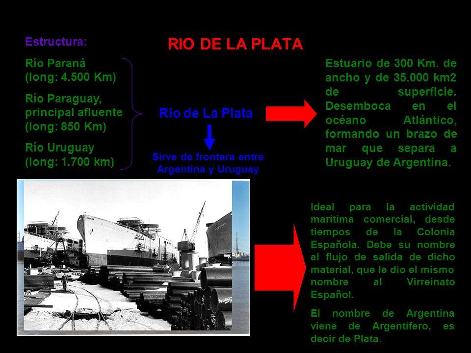 Estructura: Río Paraná (long: 4.500 Km) Río Paraguay, principal afluente (long: 850 Km) Río Uruguay (long: 1.700 km) Río de La Plata Estuario de 300 K
