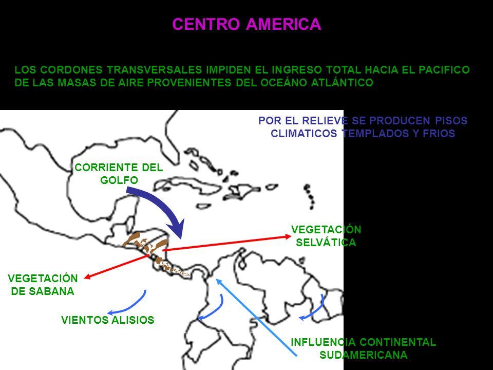 CENTRO AMERICA VEGETACIÓN DE SABANA VEGETACIÓN SELVÁTICA CORRIENTE DEL GOLFO VIENTOS ALISIOS INFLUENCIA CONTINENTAL SUDAMERICANA LOS CORDONES TRANSVER