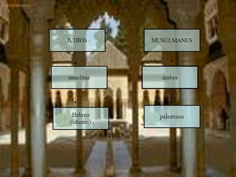 palestinos MUSULMANES árabes JUDÍOS israelitas Hebreo (idioma)