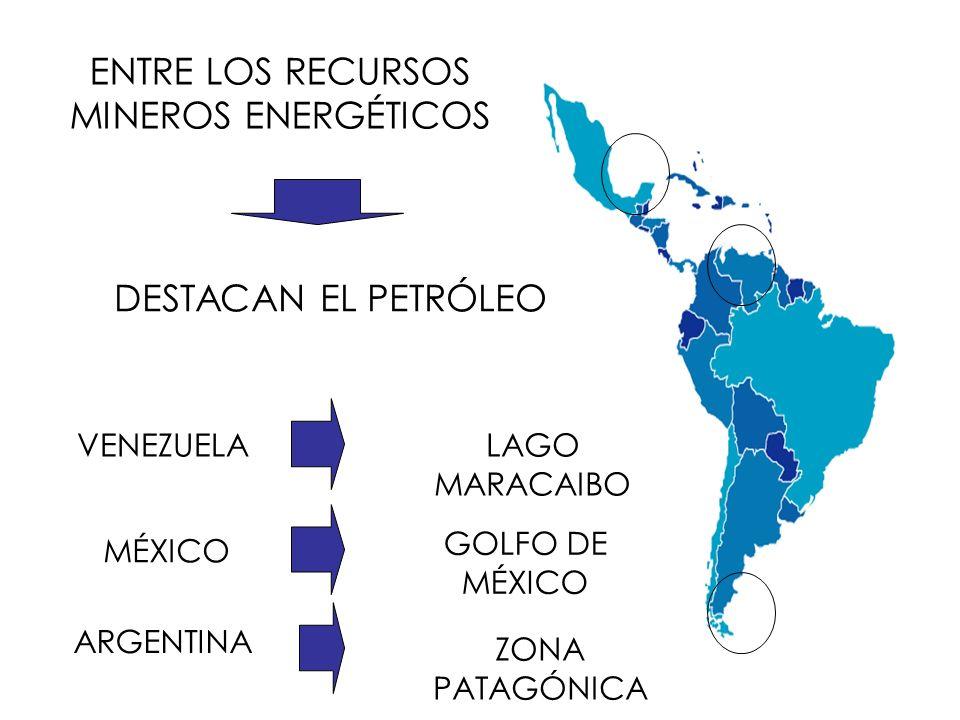 Ganadería Las zonas de llanuras en el sur de Venezuela, y las praderas en la pampa rioplatense de América del Sur (Argentina, Uruguay), cuentan con condiciones naturales óptimas para la explotación de este recurso, especialmente del ganado bovino.