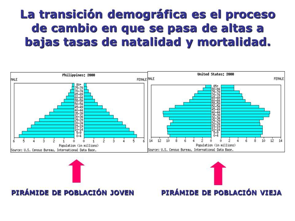 La transición demográfica es el proceso de cambio en que se pasa de altas a bajas tasas de natalidad y mortalidad. PIRÁMIDE DE POBLACIÓN JOVEN PIRÁMID