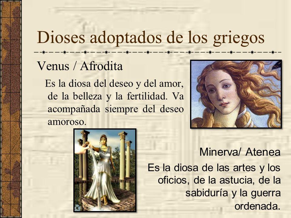 Dioses adoptados de los griegos Venus / Afrodita Es la diosa del deseo y del amor, de la belleza y la fertilidad. Va acompañada siempre del deseo amor