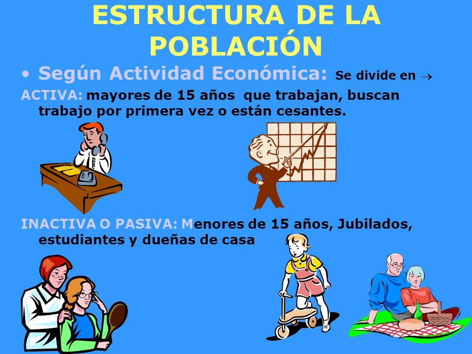 ESTRUCTURA DE LA POBLACIÓN Según Actividad Económica: Se divide en ACTIVA: mayores de 15 años que trabajan, buscan trabajo por primera vez o están ces
