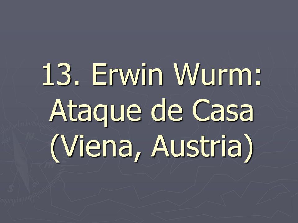 13. Erwin Wurm: Ataque de Casa (Viena, Austria)