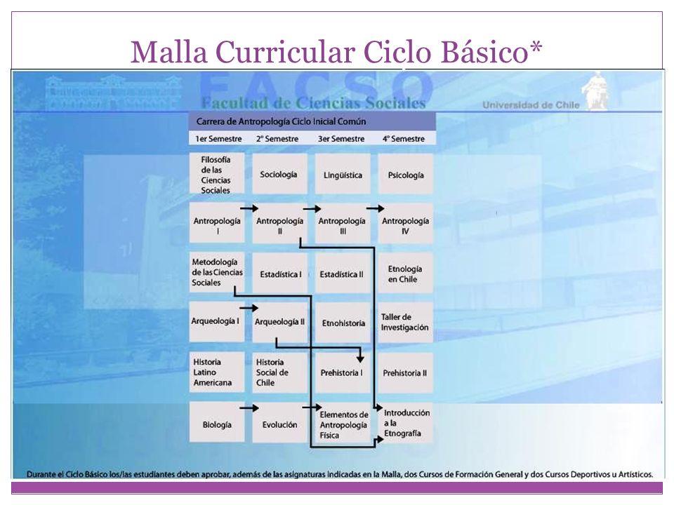 Malla Curricular Ciclo Básico*