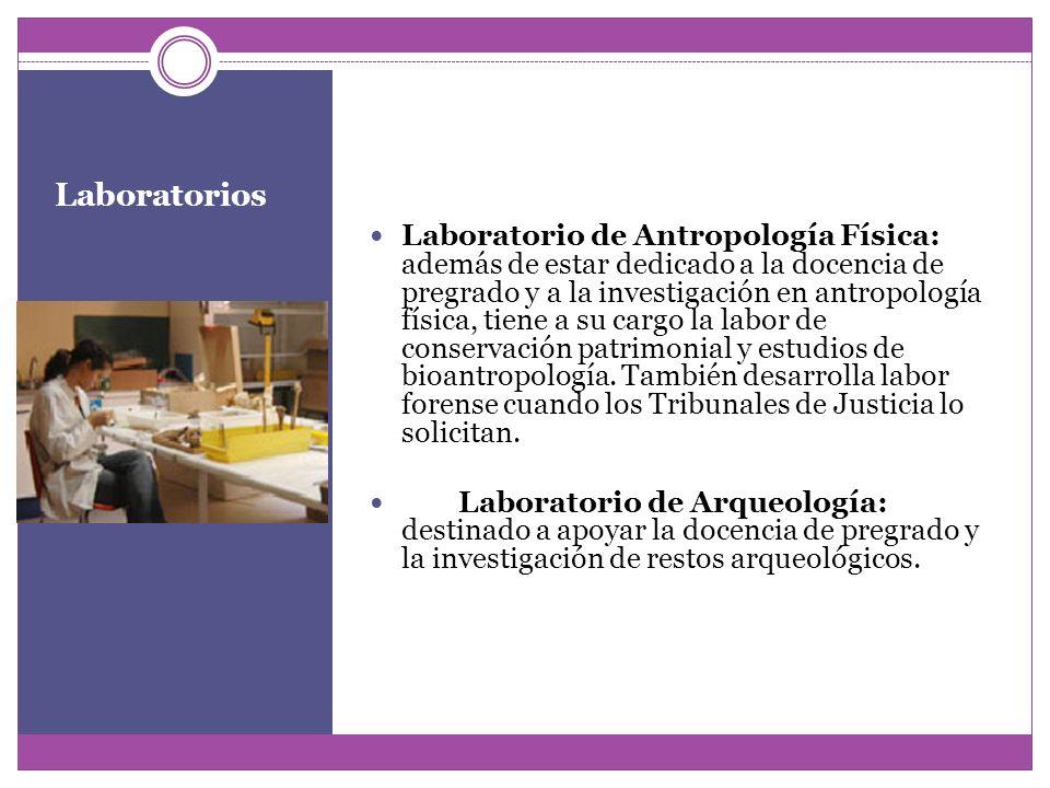 Laboratorios Laboratorio de Antropología Física: además de estar dedicado a la docencia de pregrado y a la investigación en antropología física, tiene