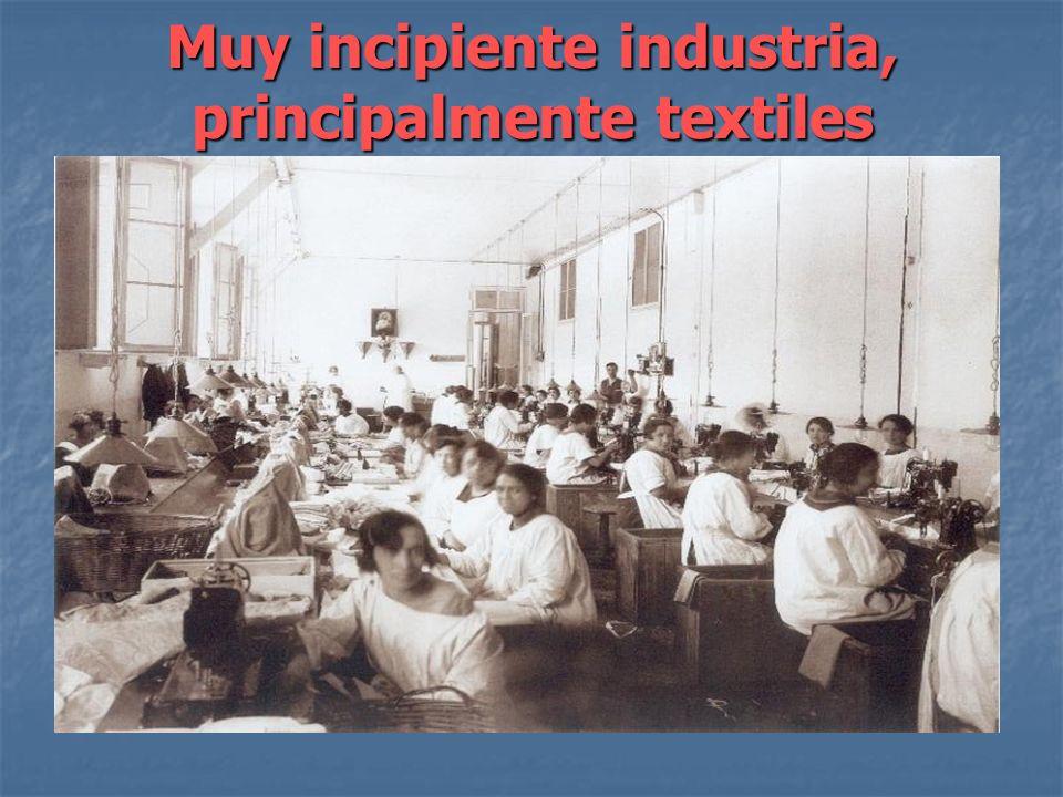 Muy incipiente industria, principalmente textiles
