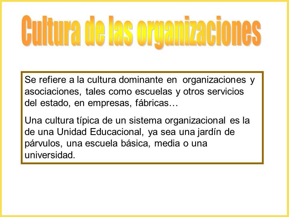 Se refiere a la cultura dominante en organizaciones y asociaciones, tales como escuelas y otros servicios del estado, en empresas, fábricas… Una cultura típica de un sistema organizacional es la de una Unidad Educacional, ya sea una jardín de párvulos, una escuela básica, media o una universidad.