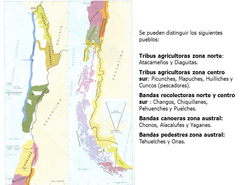 PSU Historia y Ciencias Sociales Raíces Históricas de Chile U 1/ 5 Se pueden distinguir los siguientes pueblos: Tribus agricultoras zona norte: Atacam