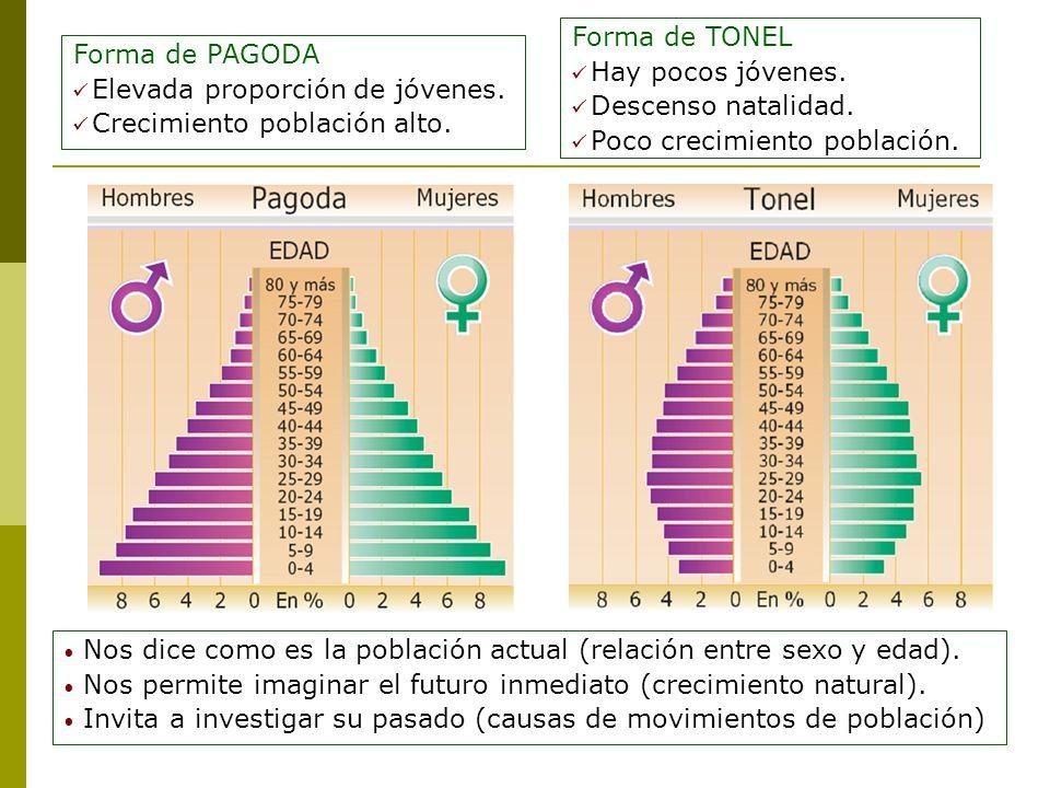 Forma de PAGODA Elevada proporción de jóvenes. Crecimiento población alto. Forma de TONEL Hay pocos jóvenes. Descenso natalidad. Poco crecimiento pobl