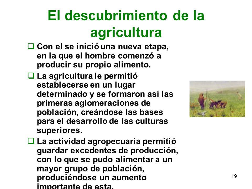 19 El descubrimiento de la agricultura Con el se inició una nueva etapa, en la que el hombre comenzó a producir su propio alimento. La agricultura le