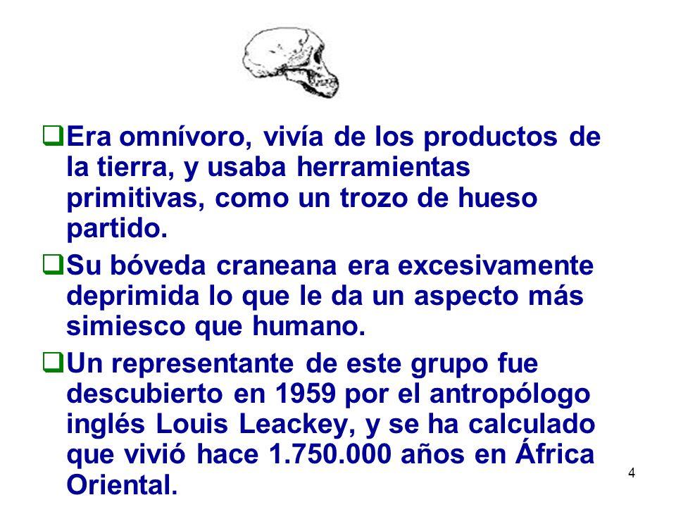 15 Este período se caracteriza por dos grandes procesos: El proceso de hominización, es decir, la evolución biológica del hombre.