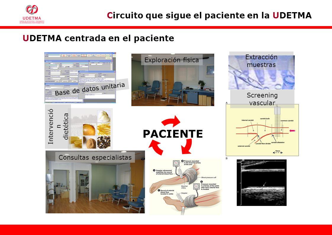 UDETMA centrada en el paciente Exploración física Extracción muestras Consultas especialistas Base de datos unitaria Intervenció n dietética Screening