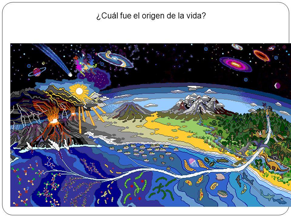 ¿Cuál fue el origen de la vida?