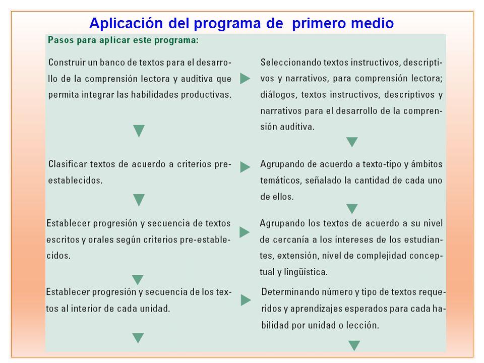 Aplicación del programa de primero medio