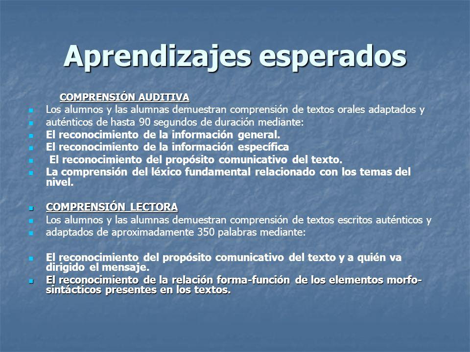 Contexto lingüístico y Sintáctico E. & C. 2 LINGÜÍSTICO LINGÜÍSTICO LÉXICO Léxico relacionado con los campos semánticos señalados para el nivel. SINTÁ