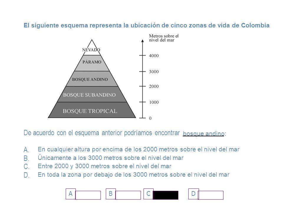 ADCB El siguiente esquema representa la ubicación de cinco zonas de vida de Colombia De acuerdo con el esquema anterior podríamos encontrar bosque and