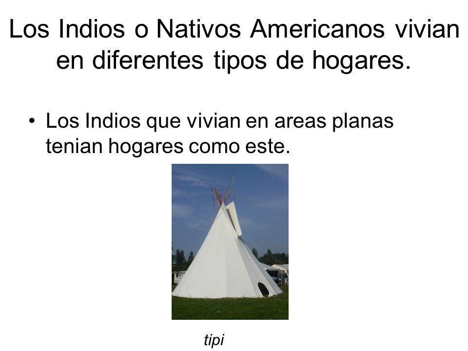 Los Indios o Nativos Americanos vivian en diferentes tipos de hogares. Los Indios que vivian en areas planas tenian hogares como este. tipi