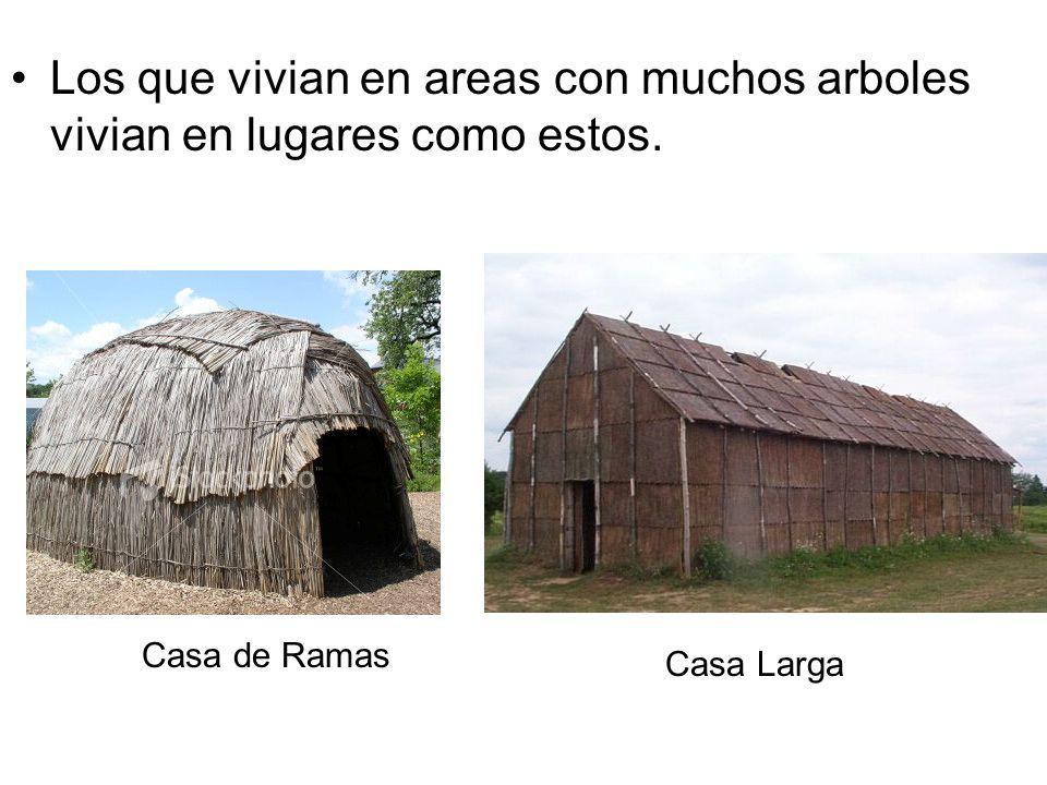 Los que vivian en areas con muchos arboles vivian en lugares como estos. Casa de Ramas Casa Larga