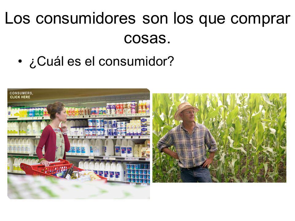 Los consumidores son los que comprar cosas. ¿Cuál es el consumidor?