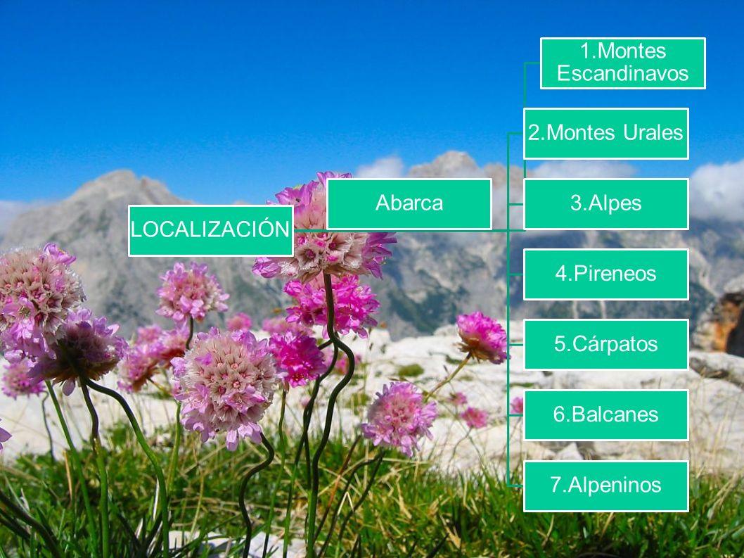 LOCALIZACIÓN 1.Montes Escandinavos 2.Montes Urales 3.Alpes 4.Pireneos 5.Cárpatos 6.Balcanes 7.Alpeninos Abarca