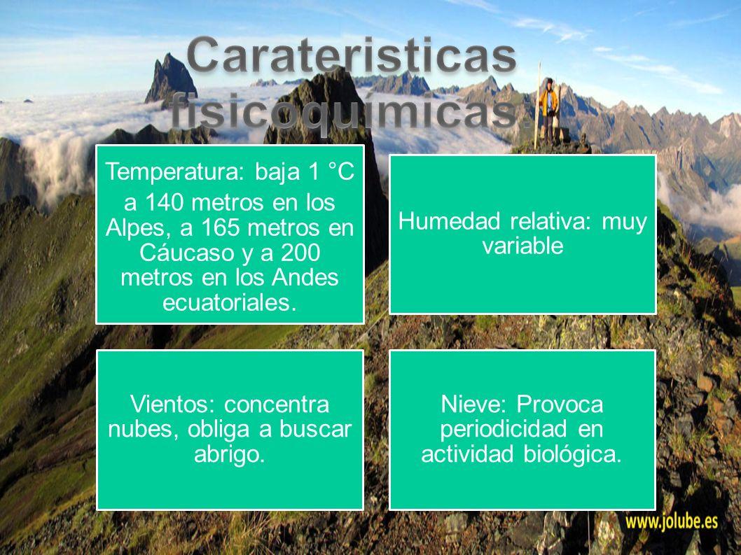 Temperatura: baja 1 °C a 140 metros en los Alpes, a 165 metros en Cáucaso y a 200 metros en los Andes ecuatoriales. Humedad relativa: muy variable Vie