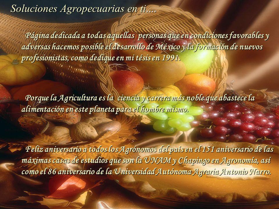 Soluciones Agropecuarias en ti....
