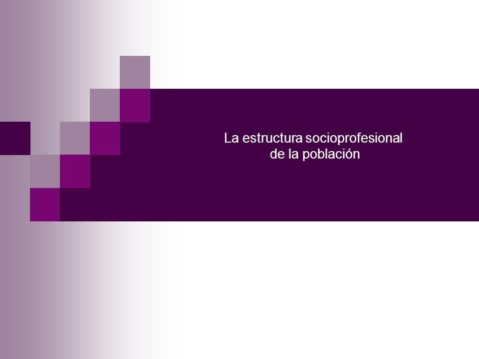 La estructura socioprofesional de la población
