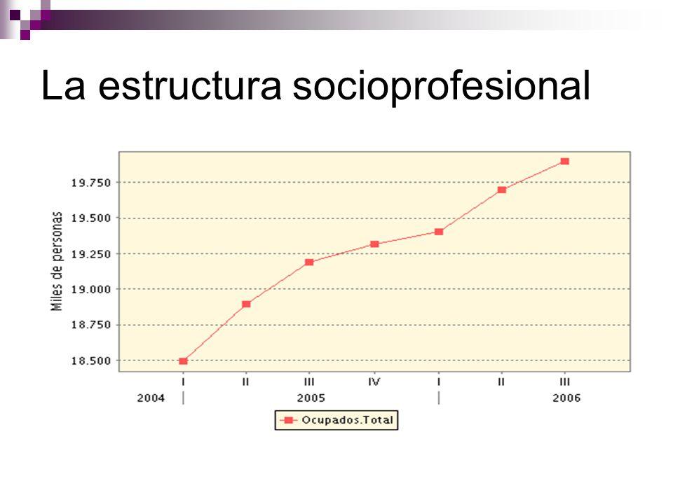La estructura socioprofesional