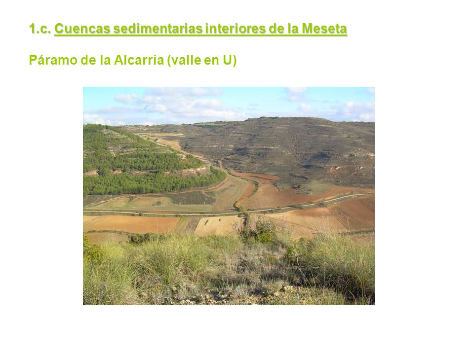 1.c. Cuencas sedimentarias interiores de la Meseta 1.c. Cuencas sedimentarias interiores de la Meseta Páramo de la Alcarria (valle en U)