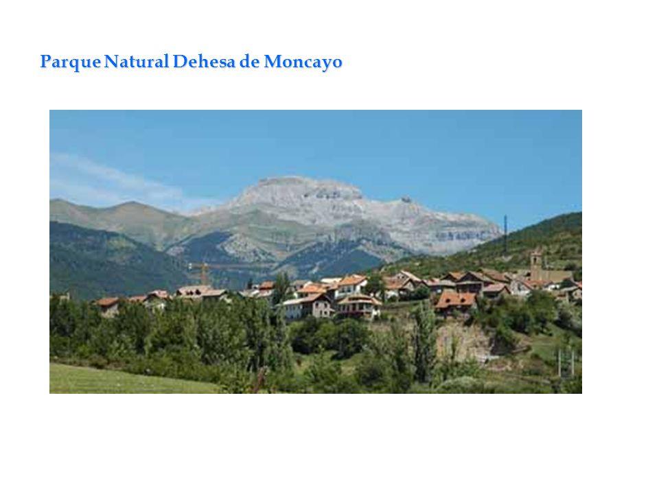 Parque Natural Dehesa de Moncayo