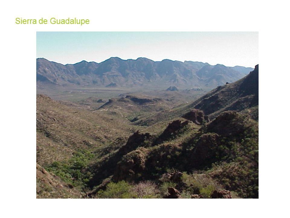 Sierra de Guadalupe