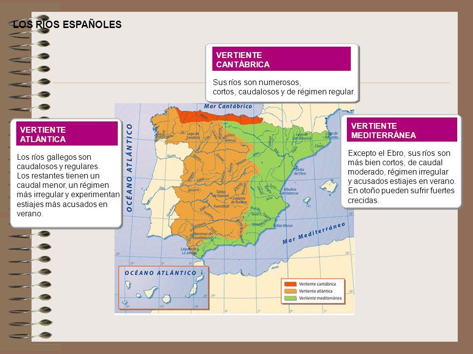 LOS RÍOS ESPAÑOLES VERTIENTE ATLÁNTICA Los ríos gallegos son caudalosos y regulares. Los restantes tienen un caudal menor, un régimen más irregular y