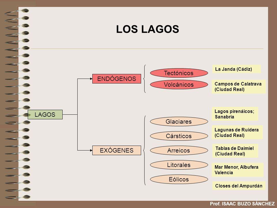 LOS LAGOS LAGOS ENDÓGENOS EXÓGENES Tectónicos Volcánicos Glaciares Cársticos Arreicos Litorales Eólicos La Janda (Cádiz) Campos de Calatrava (Ciudad R