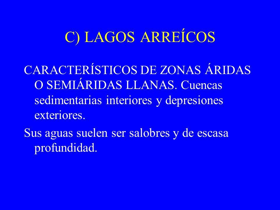 C) LAGOS ARREÍCOS CARACTERÍSTICOS DE ZONAS ÁRIDAS O SEMIÁRIDAS LLANAS. Cuencas sedimentarias interiores y depresiones exteriores. Sus aguas suelen ser