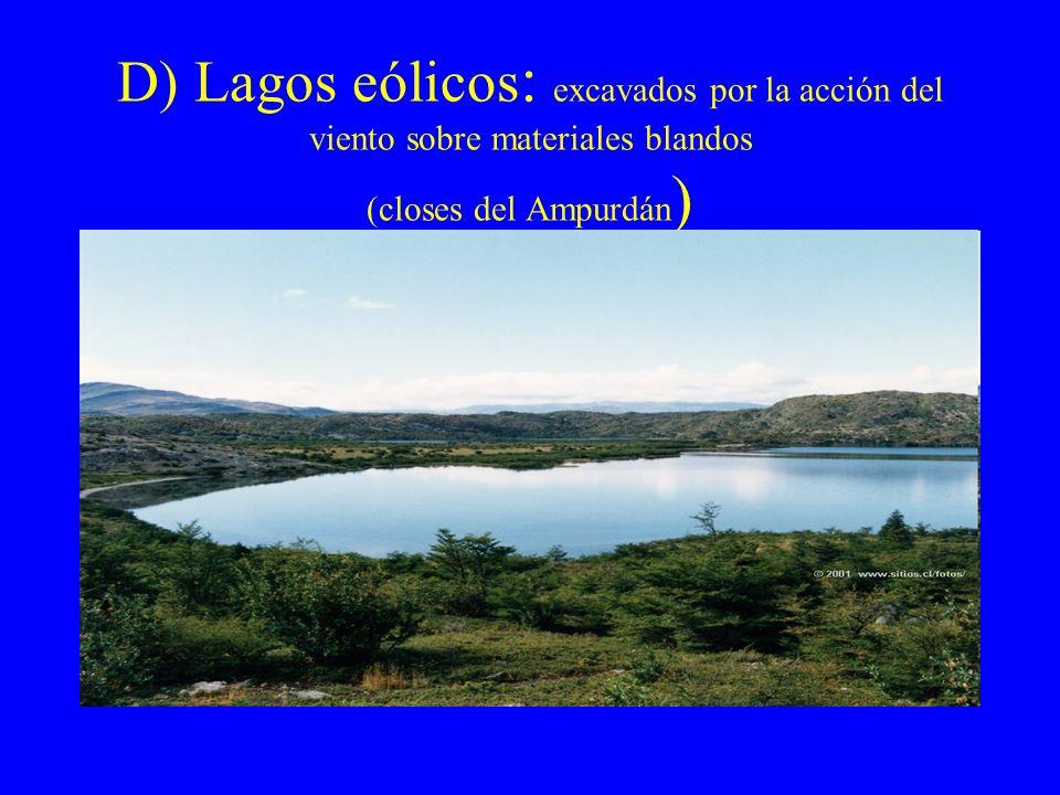 D) Lagos eólicos : excavados por la acción del viento sobre materiales blandos (closes del Ampurdán )