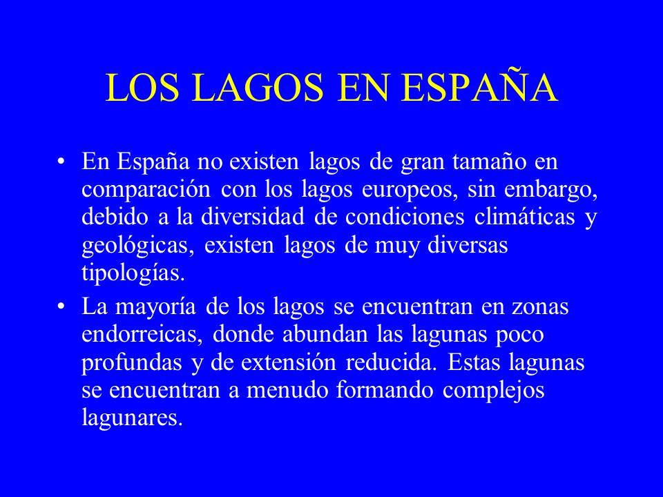 tectónicos,, los litorales y albuferas, como Además de los lagos endorreicos, en España hay lagos de distinto origen, existen lagos de tipo glaciar, como el lago de Sanabria (Zamora); tectónicos, como la laguna de la Janda (Cádiz); volcánicos, como la Laguna de Fuentilleja (Campo de Calatrava, Ciudad Real); cársticos, como las lagunas de Ruidera (Ciudad Real); y los litorales y albuferas, como la Albufera de Valencia o el Mar Menor (Murcia).