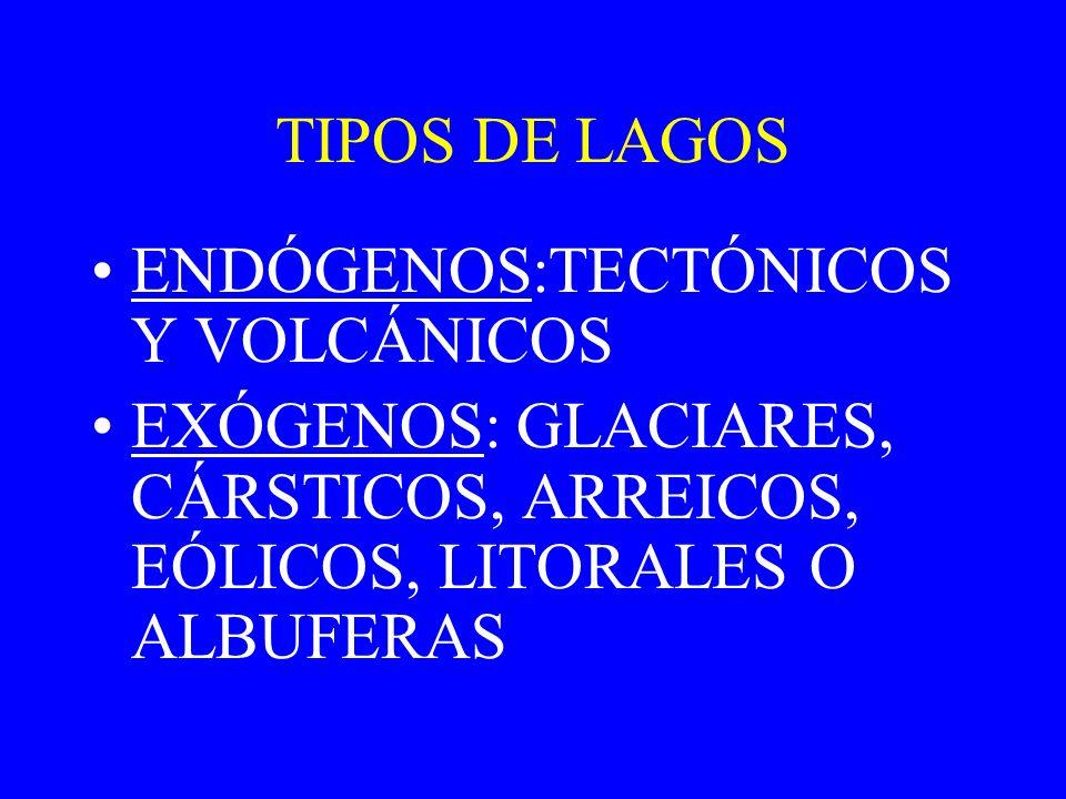 E) Lagos litorales o albuferas: separados del mar por un cordón litoral la Abufera de Valencia