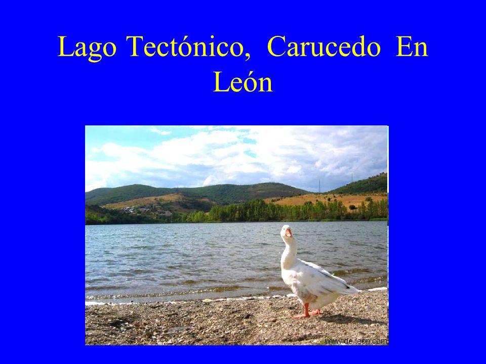 DE ORIGEN MIXTO: TECTÓNICO Y CARSTICO Banyoles.Se formó en la época cuaternaria,.